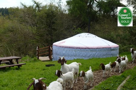 Fab farm stay - Luxury yurt & private bathroom
