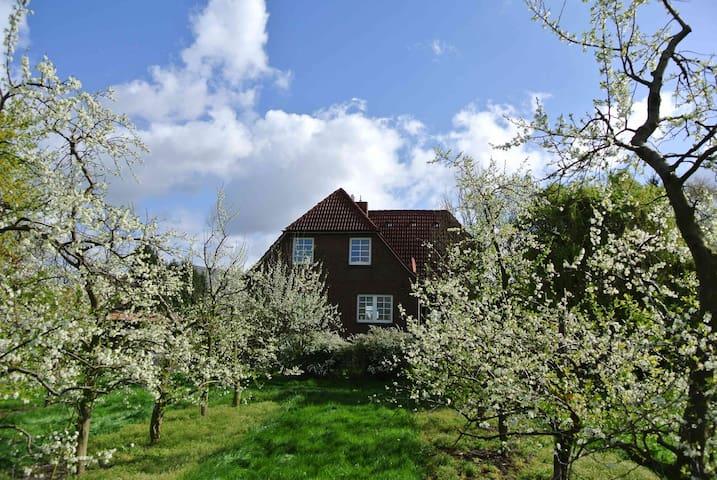 Zwischen Elbe und Obstwiesen - Jork - House
