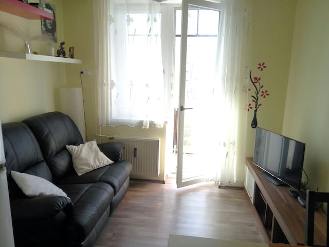 Cosy & Affordable flat - Ljubljana