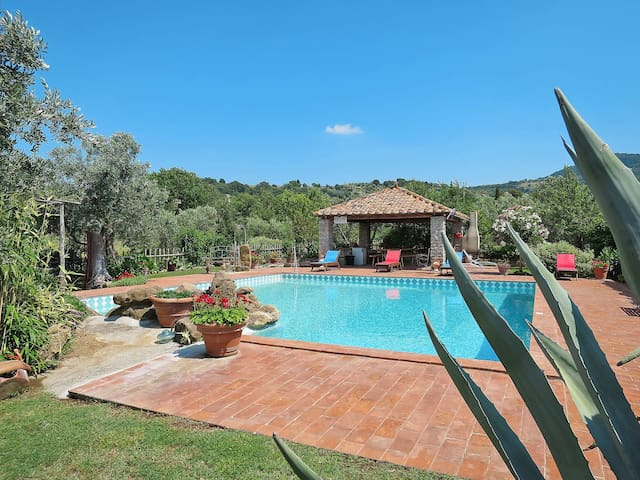 Holiday home in Scansano/Polveraia for 6 persons