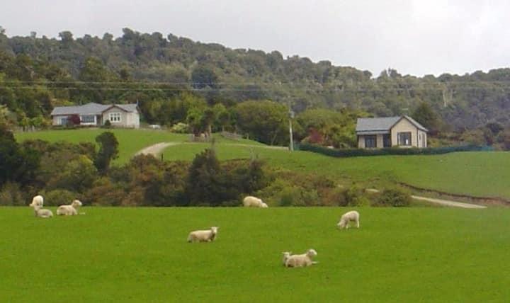 Cottage- Hilltop Catlins - Self Isolation Paradise