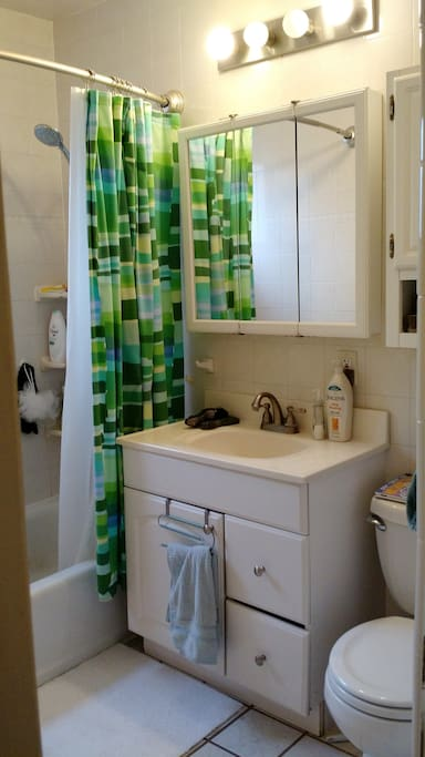 shared bathroom with full bath (handheld shower attachment!) and lots of natural light