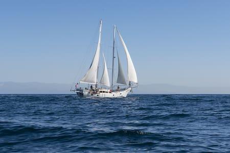 S/Y Morning Star - 72' Schooner - Ventura - Boat
