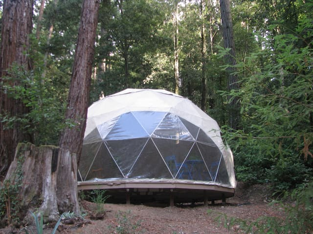 Geodome Retreat in Santa Cruz Mnts. - 沃森維爾(Watsonville) - 其它