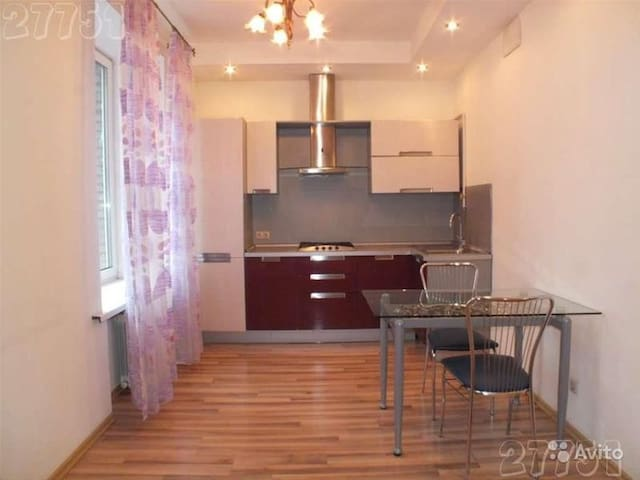 Whole nice studio near Park Pobedi! - Moskva - Daire