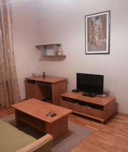 Уютная квартира в Северодонецке - Сєвєродонецьк - Apartment