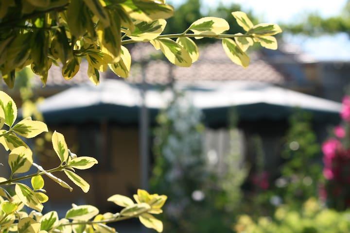 Villa Yaila's Yellow House - Kamen Bryag - House