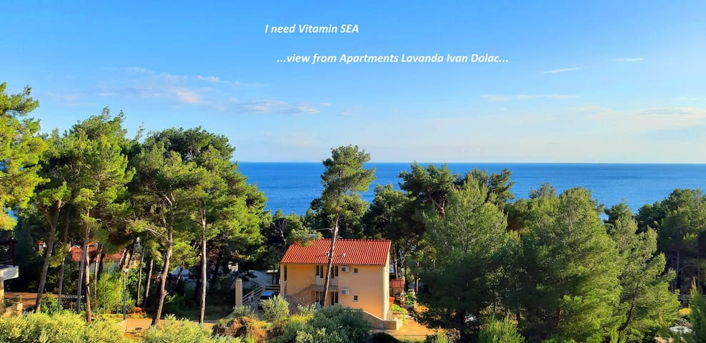 Amazing sea view from Lavanda apartment A3