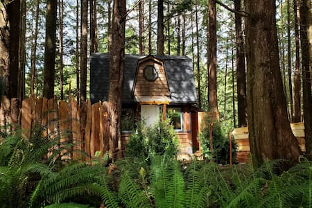 The Sapling Cabin by Evergreen Forest Cabins