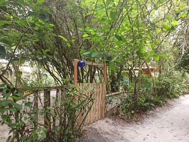 Camping arborizado Ilha do Mel