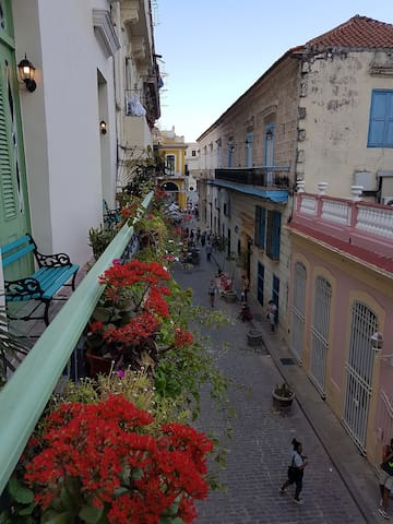 Balcony overlooking San Ignacio street