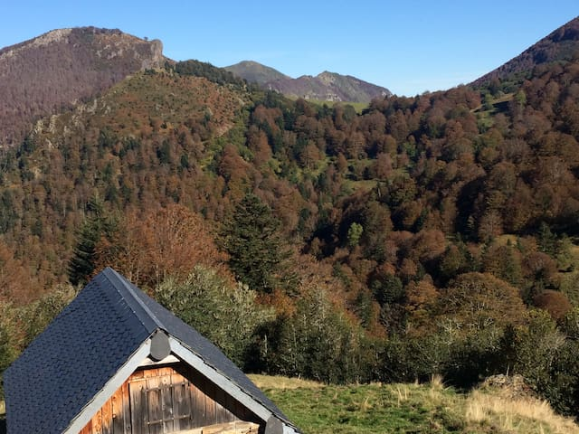 Autumn colours in the Ariege