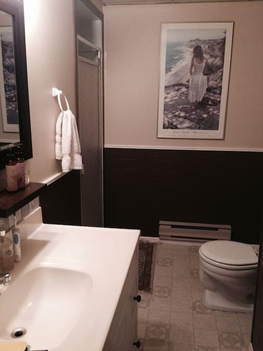 Personal Clean bright private bathroom with shower