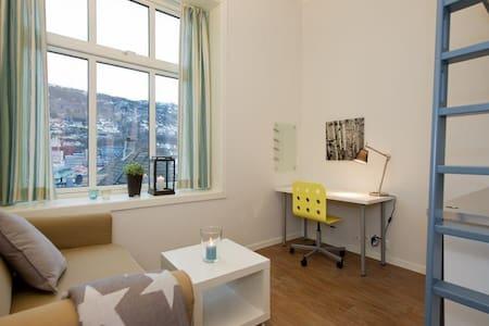 Very Central Studio-Apt. (6) - Bergen - Apartment