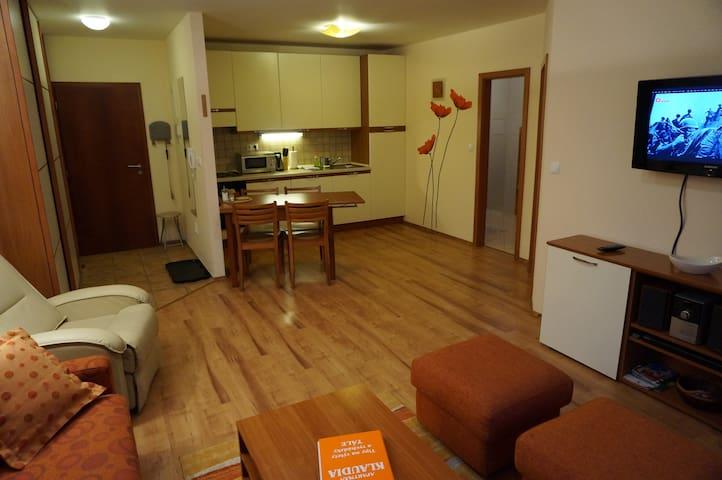 Apartmán KLAUDIA - Bystrá