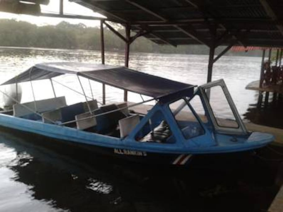 Transportation from Moin to Tortuguero