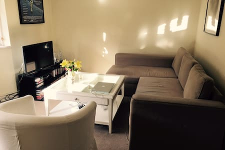 Comfortable pull-out couch !!