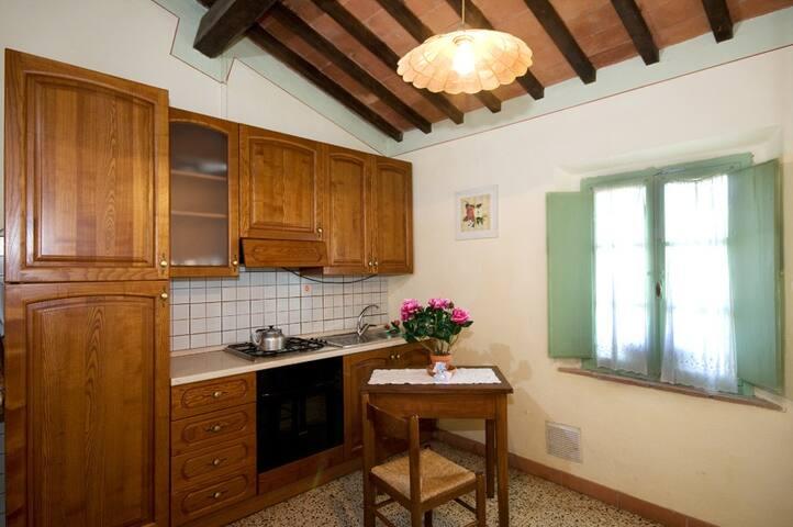 Farmhouse with pool Pisan hills - Capannoli - House