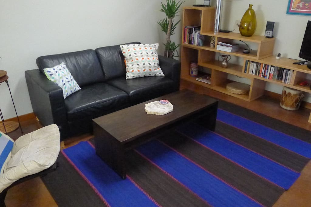 Living room with full-size pull out couch and large flat-screen TV with cable.