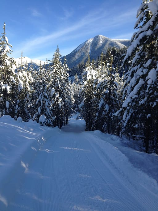 Backcountry Ski Trails.