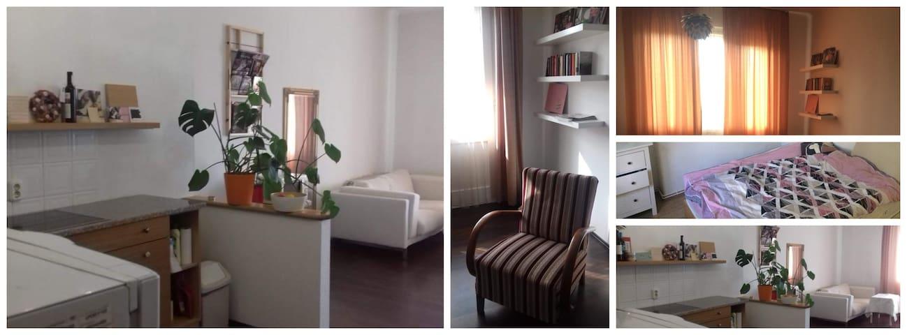 Cozy flat in center of Buda