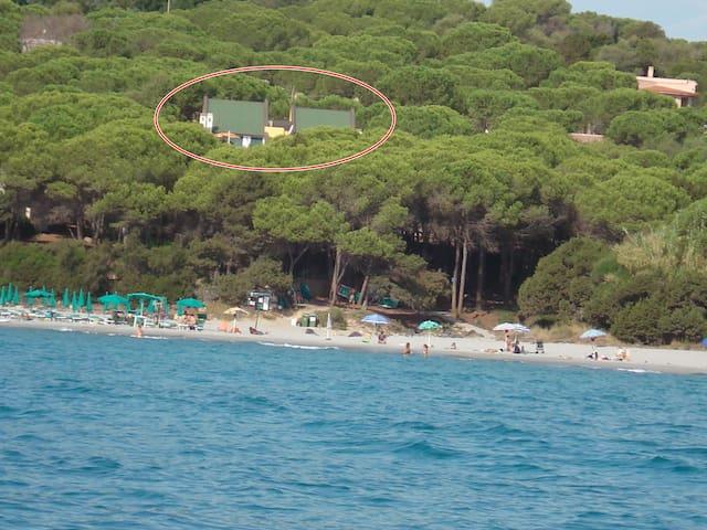 Villa a 20 mt dal mare (apt.1) - Sas Linnas Siccas - Huoneisto