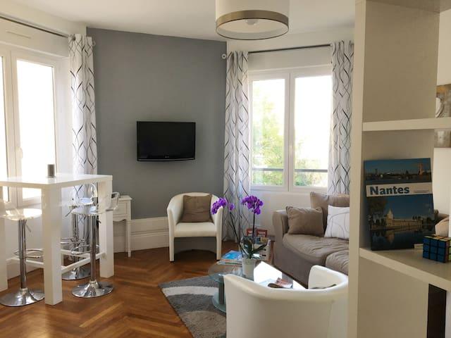 Bel appartement lumineux dans le centre de Nantes