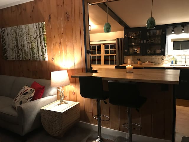 N. Conway cabin, New Renovation, centrally located