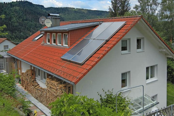 Gorgeous roofed apartment in Schiltach with pond and pool