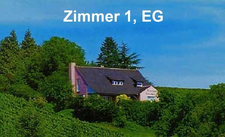 Pension Haus am Trielberg, Meersburg