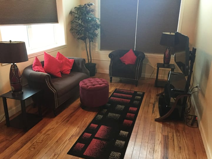 Fully Furnished 1 bedroom 1 bath condo in Downtown