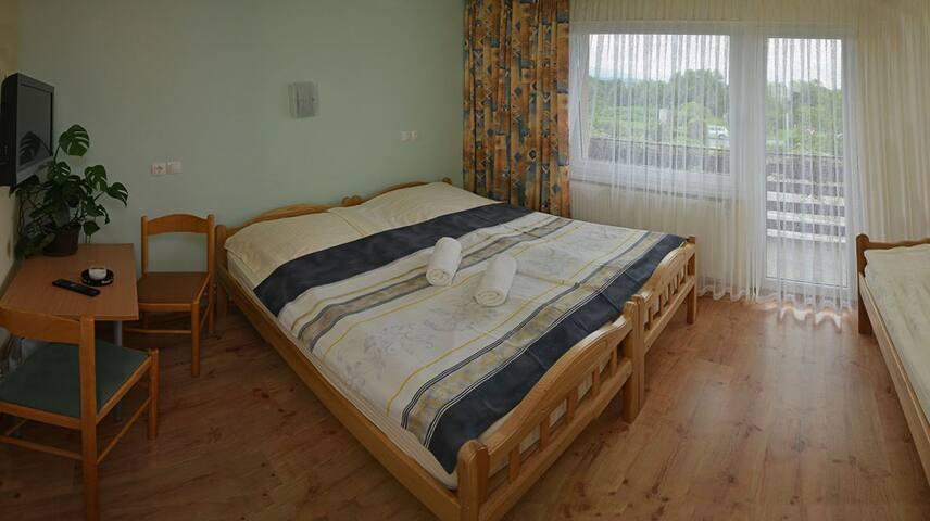 Prenočišča Stremljan - Medvode