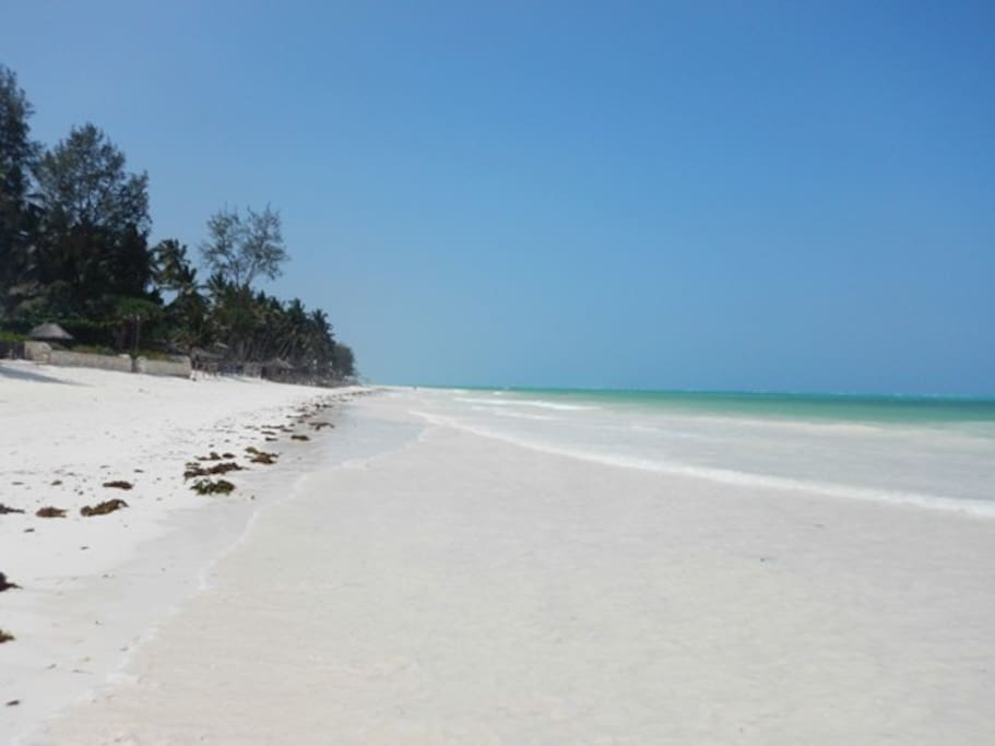 The stunning Nungwi beach which is located behind our bungalows