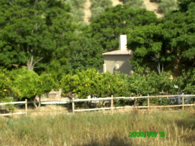 Beatiful country house near Seville - Sanlúcar la Mayor - Dům