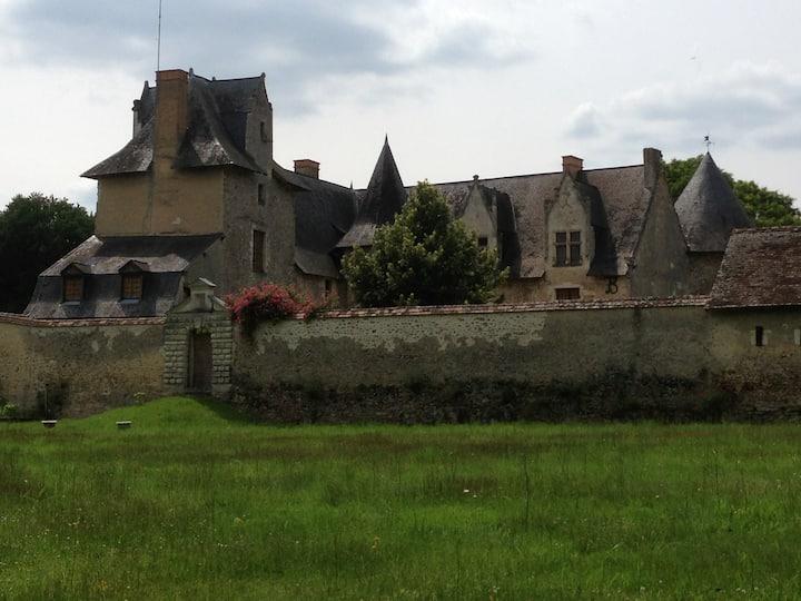 Chateau renaissance vallée de la loire,  piscine