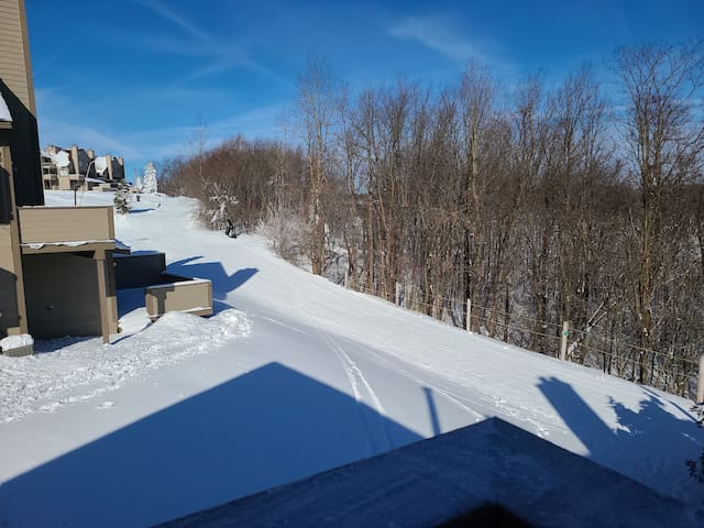 Seven Springs Ski in/Ski out One Bedroom + sofabed