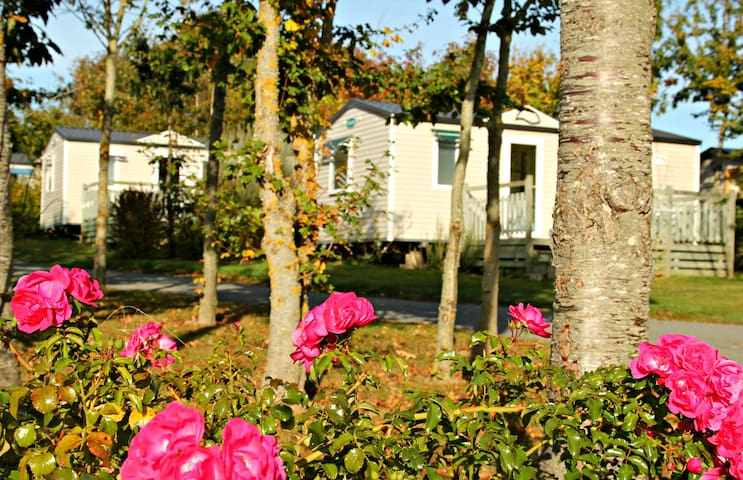 Mobile home - 800 m from the sea