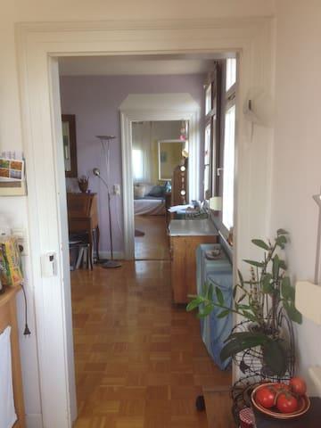 Wohnung mit Bergsicht 20 min vom Bodensee - Horgenzell - Apartemen