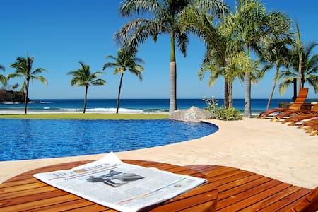 palms oceanfront villa - Flamingo Beach - Villa