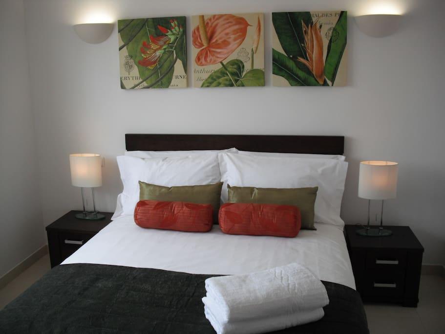 Master Double Bedroom...