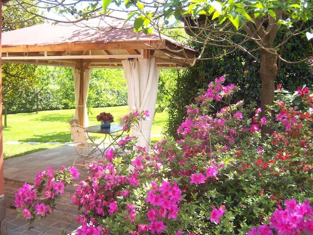 Mandolata-Exclusive villa with pool