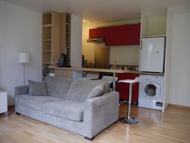 bel appartement meubl de 35 m appartements louer annecy le vieux rh ne alpes france. Black Bedroom Furniture Sets. Home Design Ideas
