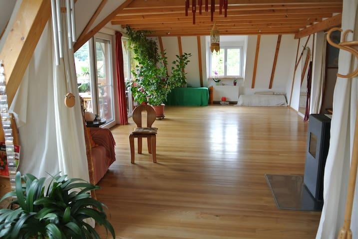 Zimmer in heller, gr. Wohnung (an den Wochenenden) - Kandern - Wohnung