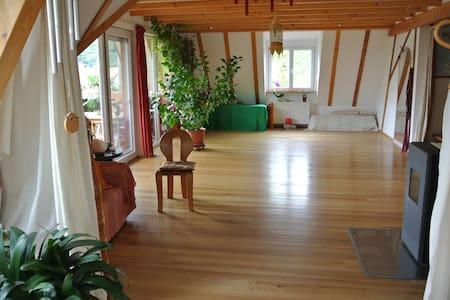 Zimmer in heller, gr. Wohnung (an den Wochenenden) - Kandern - Lägenhet