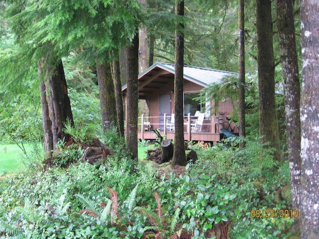 Cozy riverside/rain forest cabin ~ Bogie Bungalow