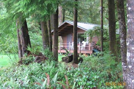 Cozy riverside/rain forest cabin - Forks - Kulübe