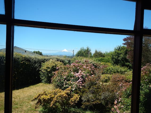 Amazing Views From Most Areas On This Property.