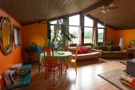 Ladybug Rainbow House