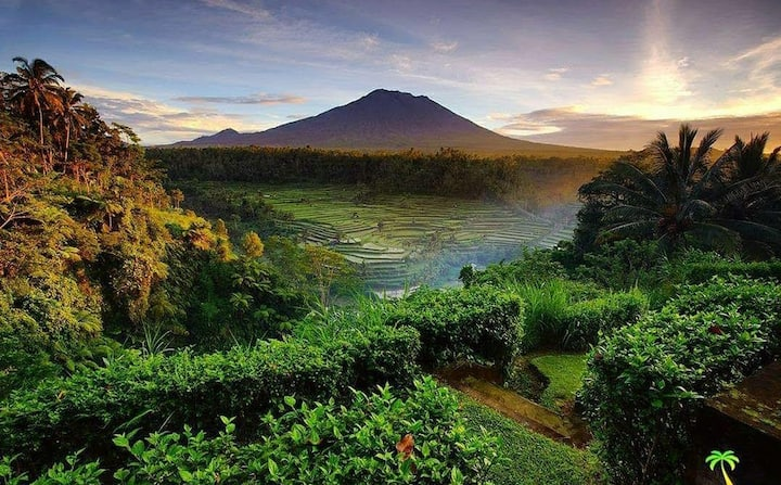 Sweet homestay under Mt Agung at bee farm