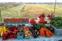 The local farm stand just up the road.  Organic, delicious vegetables, herbs, and fruits